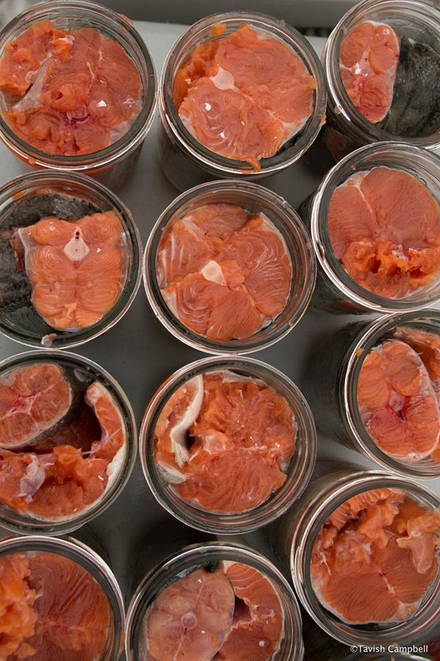 canned-salmon_bella-bella_pacific-wild_6