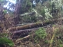 Cape_Scott_Storm_2012