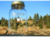 Bear Island Lighthouse in a jar   Todd Burgess