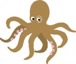 Octopus-05