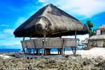 Big-Pavilion_Cebu_Experience1