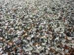 glass-beach-mackerricher-park-fort-bragg-california-5