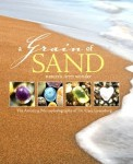 A-Grain-of-Sand-book-Gary-Greenberg-1