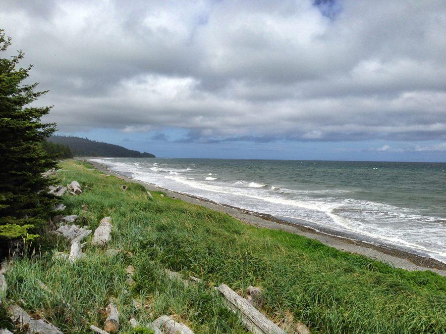 Haida Gwai_beachcombing
