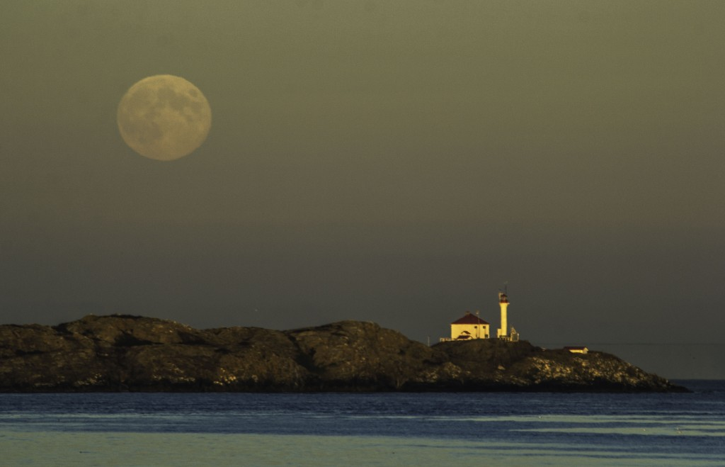 Trial Island Lighthouse under a full moon