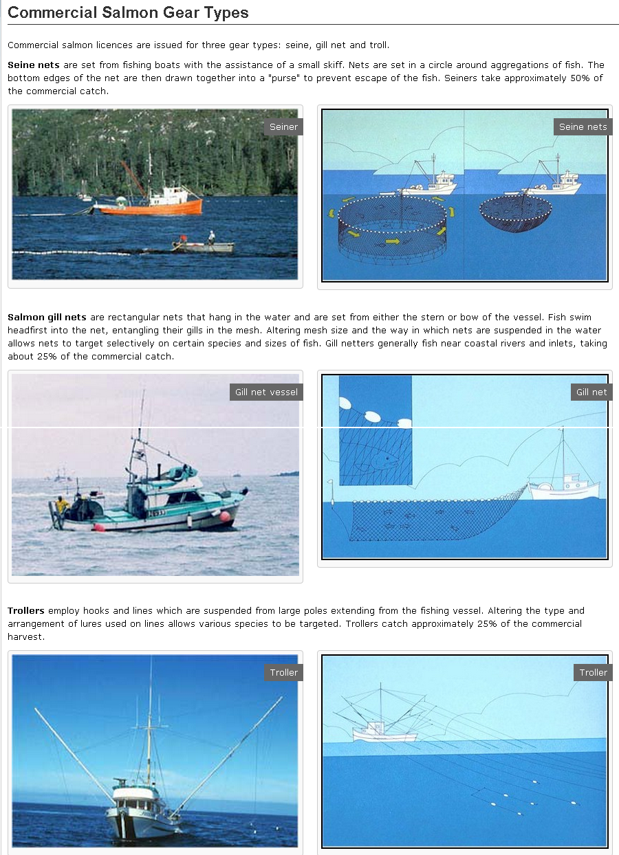 Commercial Salmon Gear Types in the Pacific Region   Fisheries and Oceans Canada