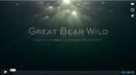 Great_Bear_video