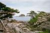 coastal-beauty