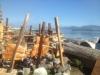 planked-salmon-bella-bella-pacific-wild_3